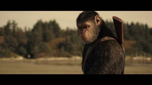 Planet Der Affen Survival Stream Deutsch Hd