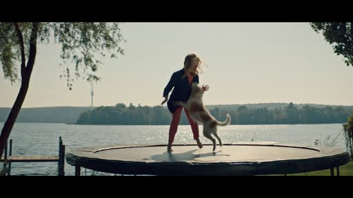 Wuff – Folge Dem Hund